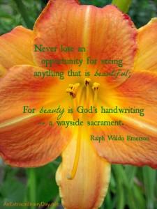 Beauty-is-Gods-handwriting-Emerson