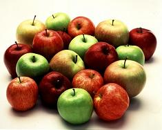 Different Kinds of Apples